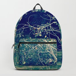 Lake me baby Backpack