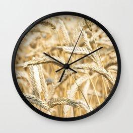 Golden Wheat Wall Clock