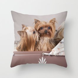 Yorkshire terrier dogs kiss Throw Pillow