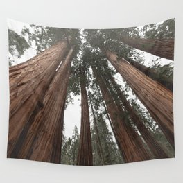 Sky Climbers - Sequoia Wall Tapestry