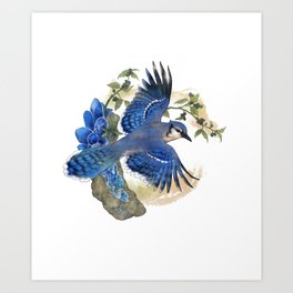 Blue Jay and Hauyne Crystals Art Print