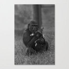 Cheeky Gorilla Lope Mono Canvas Print