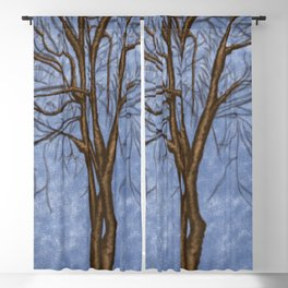The Twisted Tree Blackout Curtain