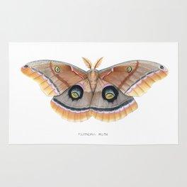 Polyphemus Moth Rug