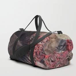 Hungry Alaskan Grizzly Bear - Eating Raw Meat Duffle Bag