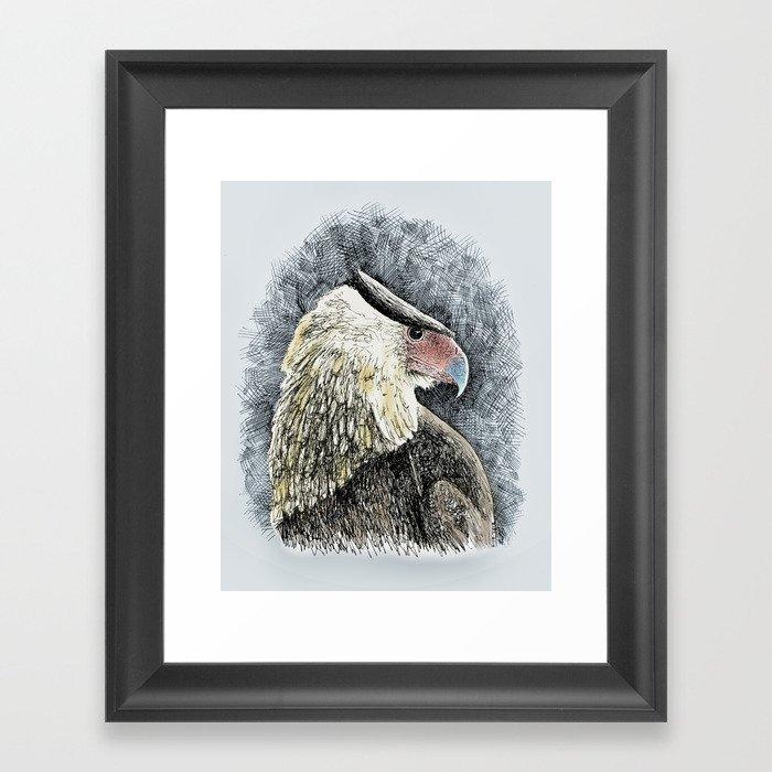 Caracara Framed Art Print