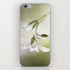 Little white flowers iPhone & iPod Skin