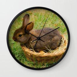 Little rabbit in the basket Wall Clock