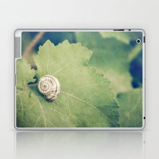 Shell Tan Laptop & iPad Skin