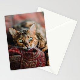 Cat eyes Stationery Cards