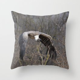 big griffon vulture flies in the sky Throw Pillow