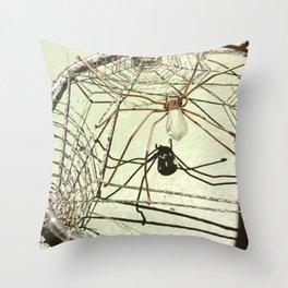 Spider web dream catcher Throw Pillow