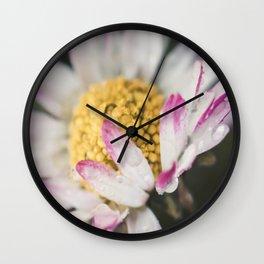 Raindrops on a daisy Wall Clock
