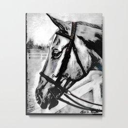 'Content' Original Equine Artwork, Horse Wall Art. EQUESTRIAN Decorating, Original Hand-Drawn Metal Print