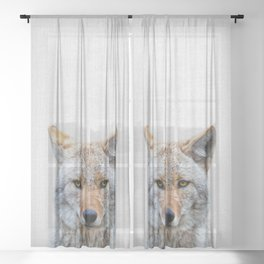 Coyote - Colorful Sheer Curtain