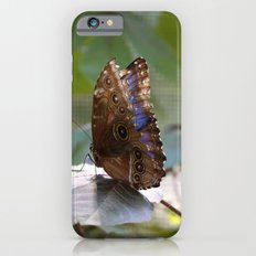 Butterfly Blue Slim Case iPhone 6s