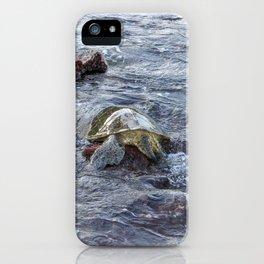 turtlebutt iPhone Case