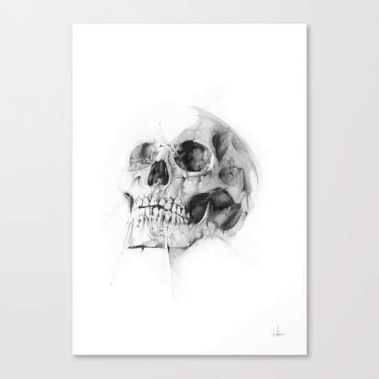 Skull 52 Canvas Print