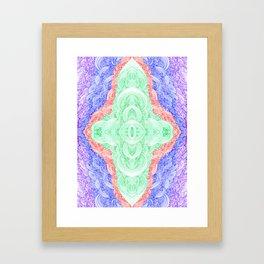 Img205.3 Framed Art Print