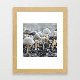 My Morning Mushroom Framed Art Print