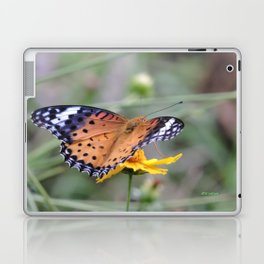 Indian Fritillary in Hangzhou Laptop & iPad Skin