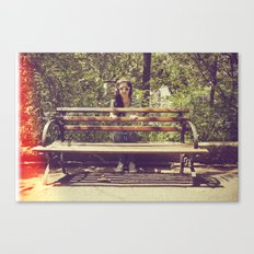 parallel Canvas Print