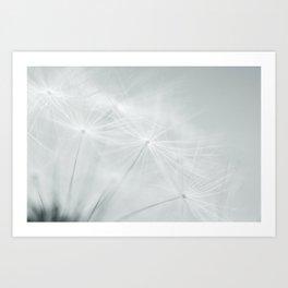 Tiny Seeds Art Print