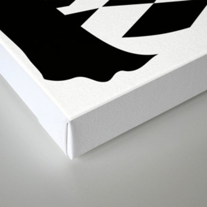 Swan Lake: Odile the Black Swan Canvas Print