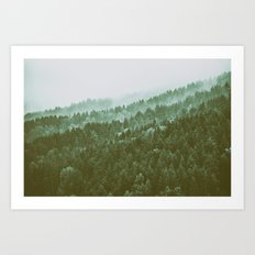 Forest in the fog Art Print