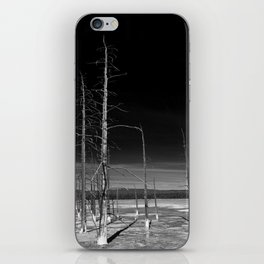 Lodgepole Pines iPhone Skin