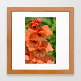 Orange Bomb Framed Art Print