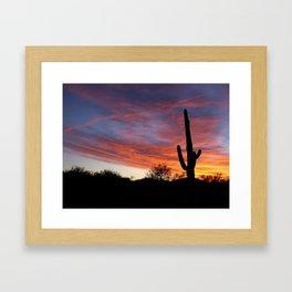 Tucson Tree Framed Art Print