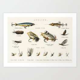 Angling baits from British Fresh Water Fishes (1879) Art Print