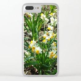 Nihon Suisen Clear iPhone Case