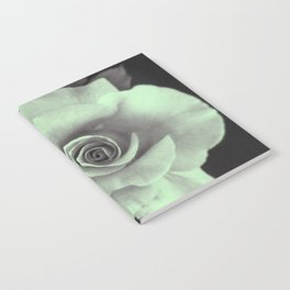 Rose with a Touch of Lime Notebook
