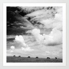 Horseland Art Print