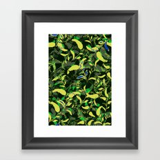 Spring fell Framed Art Print