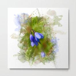 Pretty bluebells on white Metal Print
