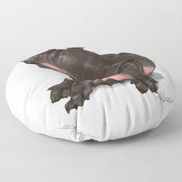 HippoCat Floor Pillow