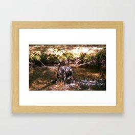 ridley Framed Art Print