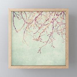 Chinese Spring Framed Mini Art Print