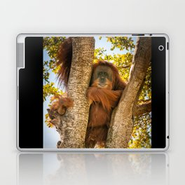 Chewy the Orangutan  Laptop & iPad Skin