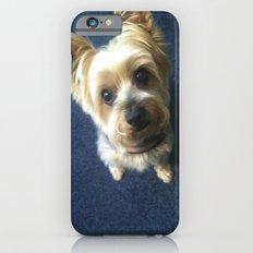 Yorkie Slim Case iPhone 6s