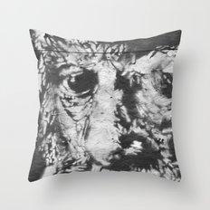 eyes of wisdom Throw Pillow