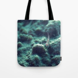 The welcoming little fish Tote Bag