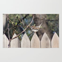 Sparrow in Early Spring Rug