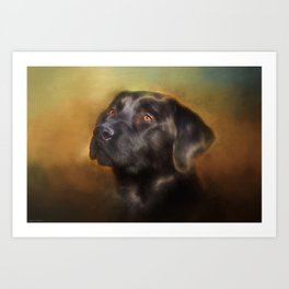 Black Lab Portrait Art Print