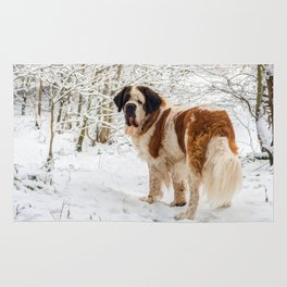 St Bernard dog in the snow Rug