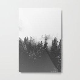 INTO THE WILD V Metal Print