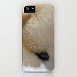 Shiba Inu Puppy iPhone Case